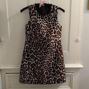 J Crew animal print dress Sz 0P